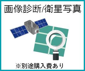 画像診断/衛星写真